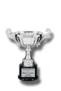 H3 Metal Trophy Cup